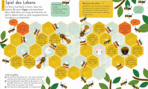Super Neuerscheinung: Bienen, Erforschen, Experimentieren, Basteln