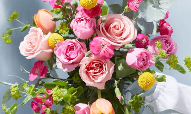Farbenfrohe Blumen für Ostern