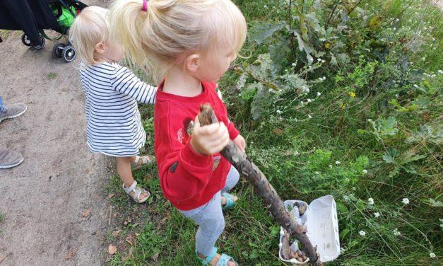 Playdate Tipp für Groß und Klein: Natur-Bingo