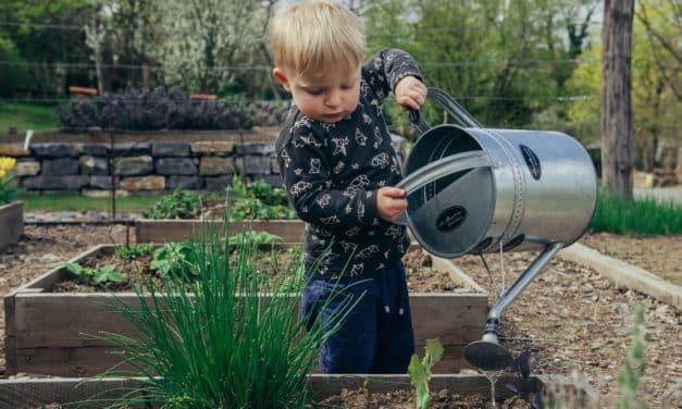 11 BARRIO Gartentipps für April