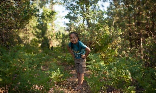 Die Natur als Lehrerin unserer Kinder: 3 erprobte Methoden