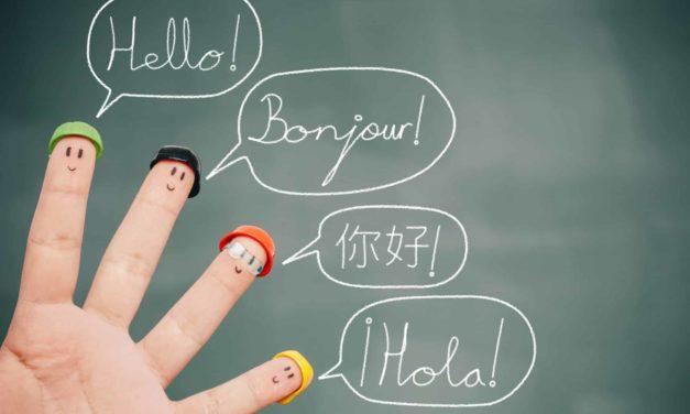 Vorteile der bilingualen Erziehung, 4 Arten der Mehrsprachigkeit