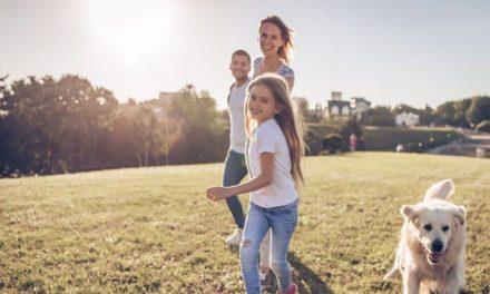 Unterwegs mit Kind und Hund: 7 erprobte Tipps