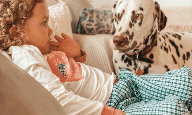 Gewinnspiel:  3 kuschelige Pyjamas von nyani